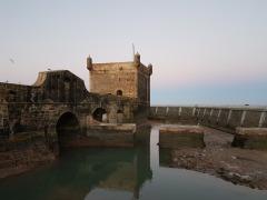 citadel-ale
